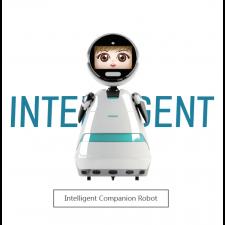Intelligent Companion Robot